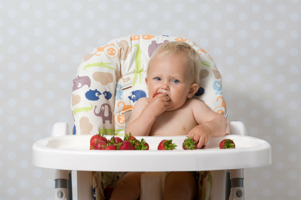 Can You Buy High Chair Covers 2